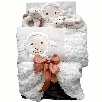 geschenk zur geburt sch fchen geschenkkorb pr sentkorb. Black Bedroom Furniture Sets. Home Design Ideas